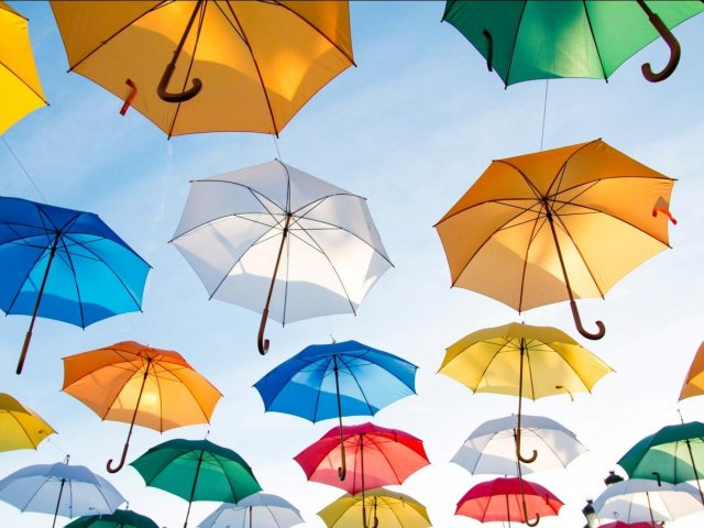 Umbrella Coverage Everything You Need to Know